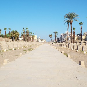 Avenue of sphinxes-in-luxor-Egypt2