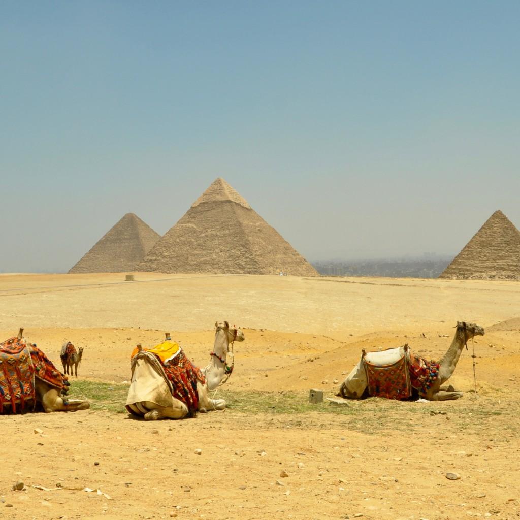 Plateau-Pyramids- in-Giza- Egypt1