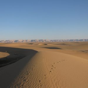 Kharga Oasis (Desert,)  -from -luxor-Egypt2